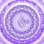 Вишудха, Аджна, Сахасрара. Верхние чакры