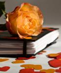 10 способов сохранить романтику