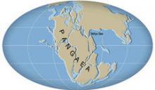 На Земле началась новая Пангея - образование единого суперконтинента