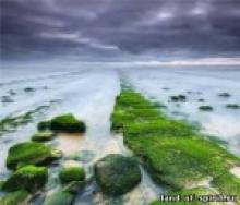 Тот-Атлант - Изумрудные скрижали