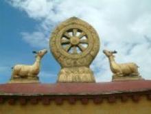 Дхаммы – краткое описание и терминология Абхидхаммы