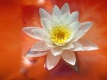 О духовной практике и духовности