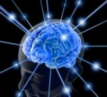 Сознание и жизнь