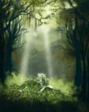 Магия природных духов
