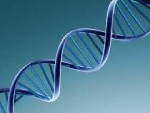 Волновая структура ДНК. Мелодии и Слово