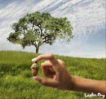 Закон «Кармы», или Закон Причины и Следствия
