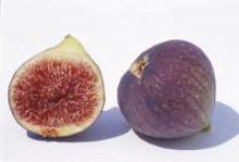 Инжир: целебный плод