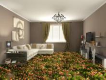 Зоны Фэн-Шуй: практические советы для дома