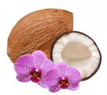 Легенда о кокосовом орехе