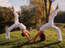 Направления и школы йоги