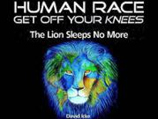 """Глава 1 из книги Дэвида Айка """"Род человеческий, встань с колен! Лев больше не спит"""" - Я - не Дэвид Айк"""