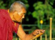 Вопросы по практике зарождения сострадания(ответы геше Джампа Дакпа)