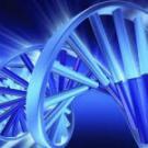 Бранные слова влияют на ДНК. Исследования учёных