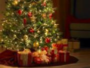 Куда поставить новогоднюю елку?