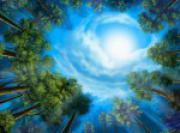 Размышления о медитации