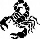 """Расклад """"Скорпион"""""""
